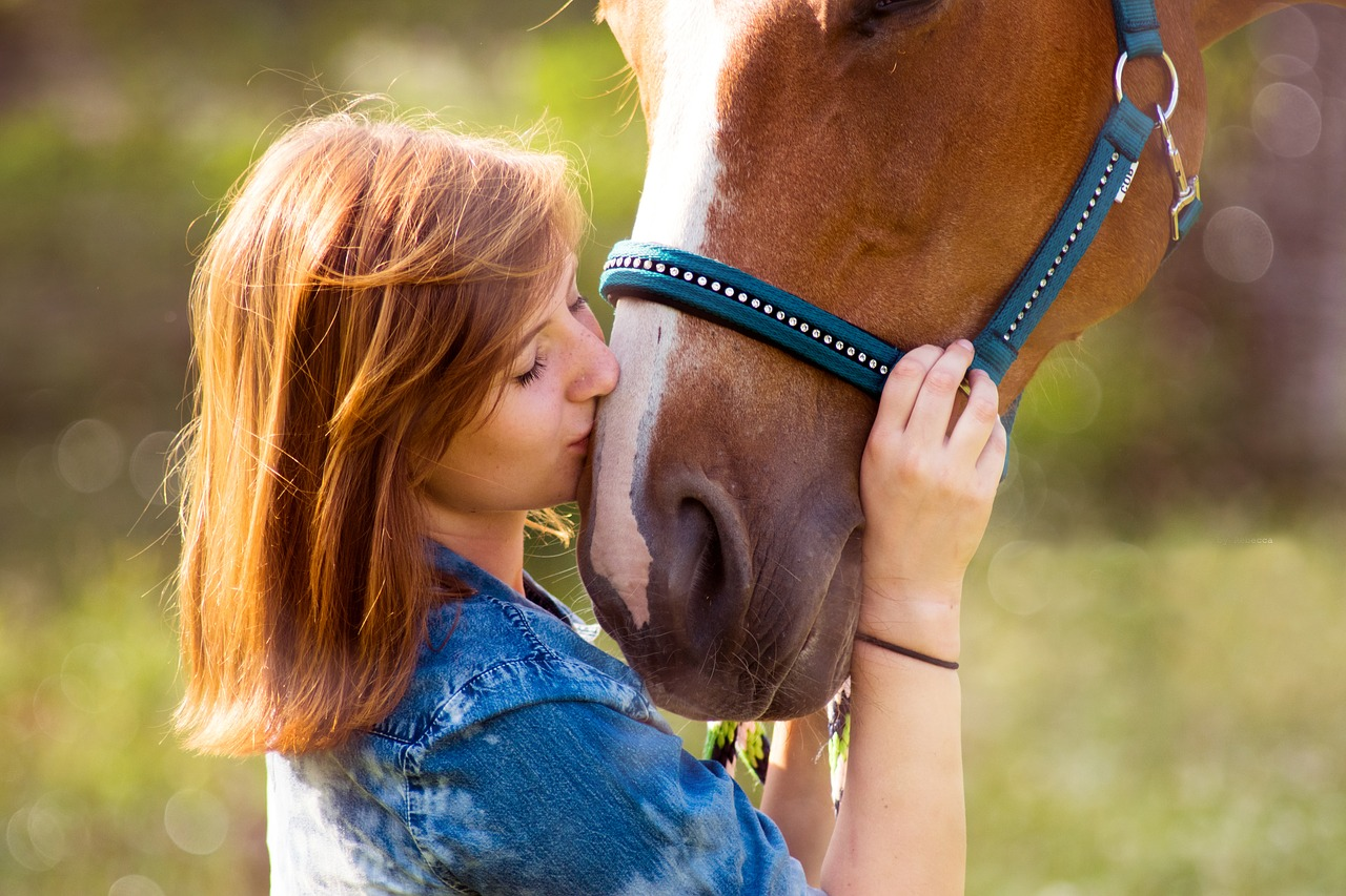 CBD Oil for Dogs, Cats and Horses